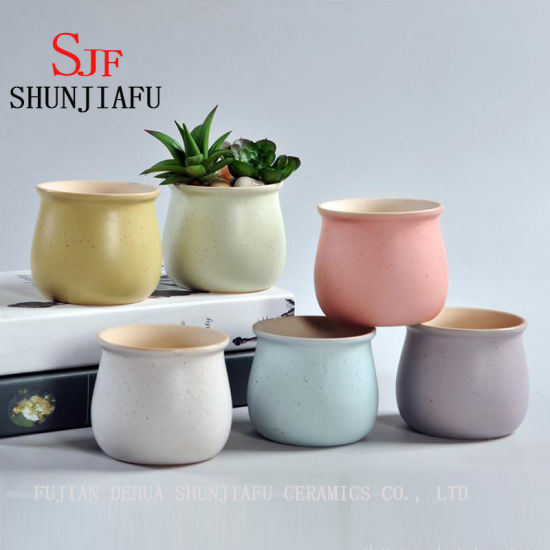 Ceramic Macaron Color Fleshy Plant Small Pots Flowerpot