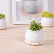 Factory Direct White Small Flower Pot with Different Size
